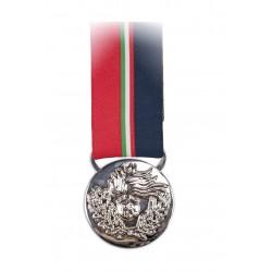 Medaglia ANC per Bandiera Argento